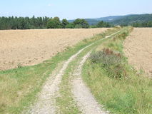 Lonely road through the plowed field. Hot summer day, plowed field, road Stock Photos