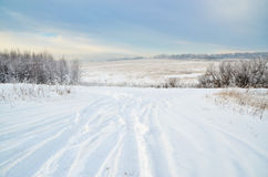 Lonely road on a snowy field through the woods royalty free stock photography
