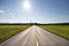 Lonely road. A lonely road on a sunny day Royalty Free Stock Image