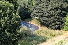 Lonely road winding through a forested area with a lamp post in Mousehold Heath Norwich stock photography
