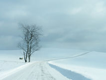 Lonely Road Winter Landscape Stock Images
