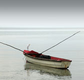 Lonely row boat Royalty Free Stock Image