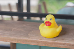 The lonely rubber duck on shelf Royalty Free Stock Photography