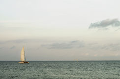 Lonely Sailboat on Horizon Stock Photography