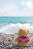 Lonely sailor-bear Royalty Free Stock Image