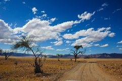 Lonely sand road in Namibia stock images