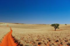 Lonely sand road in Namibia Royalty Free Stock Photos