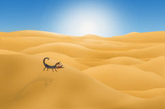 Lonely scorpion in the afternoon desert. Lonely scorpion in the wide desert in the afternoon Royalty Free Stock Image