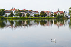 Lonely seagull floating on a background of Schwerin, Germany.  Royalty Free Stock Image