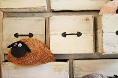 Lonely sheep doll in the drawer royalty free stock photography