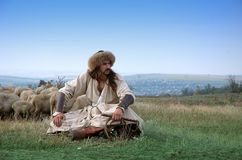 Lonely shepherd with sheep Royalty Free Stock Image