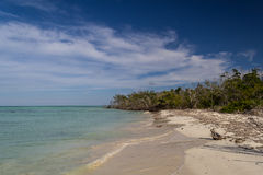 Lonely shore on a caribbean key Royalty Free Stock Images