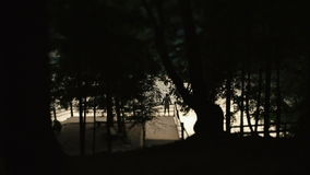 Lonely silhouette of man standing on a pier with sunset and tree  branches pattern on foreground stock video