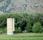 Lonely silo. In a green pasture and trees behind Royalty Free Stock Image
