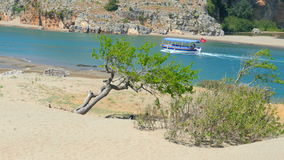 Lonely single tree, boat trip, iztuzu turtle beach, dalyan, turkey stock footage
