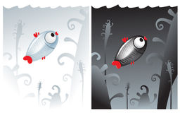 Lonely small fish black and white. Lonely small black fish on black and white fish on white. Two backgrounds Royalty Free Stock Photo