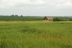 Lonely small house in the green field royalty free stock photography