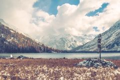Lonely spruce on the background of the lake and snowy mountains. Beautiful landscape of a mountain lake in cloudy weather stock photos