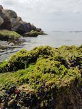 Greenstone in the sea royalty free stock photography