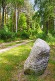 Lonely stone Stock Photos