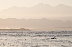 Lonely surfer at dawn Royalty Free Stock Images