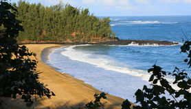 Lonely surfer on Wainiha Beach, Kauai Royalty Free Stock Photo