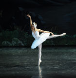 Lonely Swan-ballet Swan Lake. In December 20, 2014, Russia's St Petersburg Ballet Theater in Jiangxi Nanchang performing ballet Swan Lake royalty free stock photo