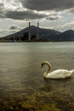 A lonely swan swimming in front of a power plant. A swan swimming peacefully in the waters of the port of Aliveri, in Euboea island, Greece, right in front a Stock Photography