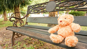 Lonely teddy bear sitting. On the old chair at park Stock Image