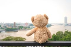 Lonely Teddy Bear Sitting River View Chao Phraya In Bang Kok City Stock