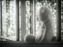 Lonely Teddy Bear Sitting on the window looking out side. Concept about love Royalty Free Stock Image