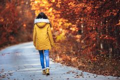 Teenage girl in the autumn forest stock image