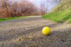 Lonely tennis ball Royalty Free Stock Image