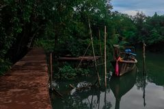 Lonely thai boat in mangrove forest stock image