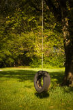 Lonely Tire Swing royalty free stock photography