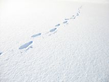 Lonely trace. Stock Photography