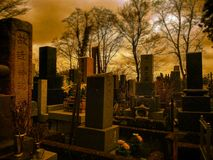 Lonely traveling. Graveyard might not be the last Royalty Free Stock Photography
