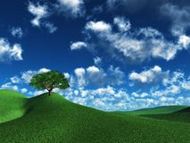Lonely tree. Illustration of a lonely tree on the top of green hills Stock Photos
