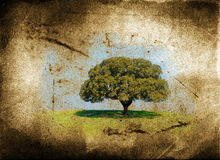 Lonely tree. With grunge and aged textured background royalty free illustration