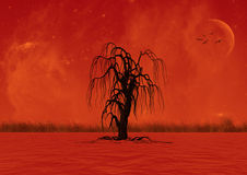 A lonely tree. In the middle of the red water Stock Photography