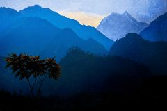 A lonely tree against the background of the Himalayan mountains and the sunset. Nepal royalty free stock image