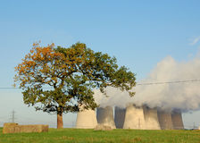 Lonely tree with cooling tower Royalty Free Stock Photos