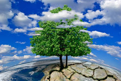 Lonely tree on a deserted planet among the clouds.(Elements of this image furnished by NASA) Stock Photos