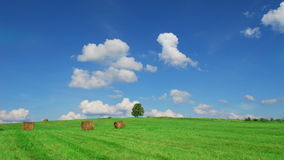 Lonely tree on field with hay bales. Time lapse shot of lonely tree on  field with hay bales stock footage