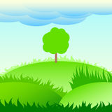 Lonely tree on a green meadow. Stock Photo