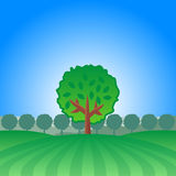 Lonely Tree Landscape. A lonely tree in a field landscape Stock Image