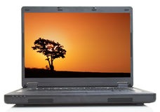 Lonely tree on lap-top Stock Photography