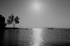 Lonely tree and longboat. Lonely tree and a longboat at sea during high tide Royalty Free Stock Photo