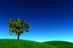 Lonely Tree in a meadow 3D render. Nature sky Stock Photo