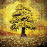 Lonely tree on meadow with daisies grunge style Stock Photo